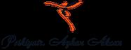 Ayhan Akcan